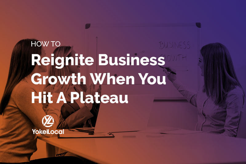 Business Growth Plateau: 5 Strategies for Reigniting Your Growth